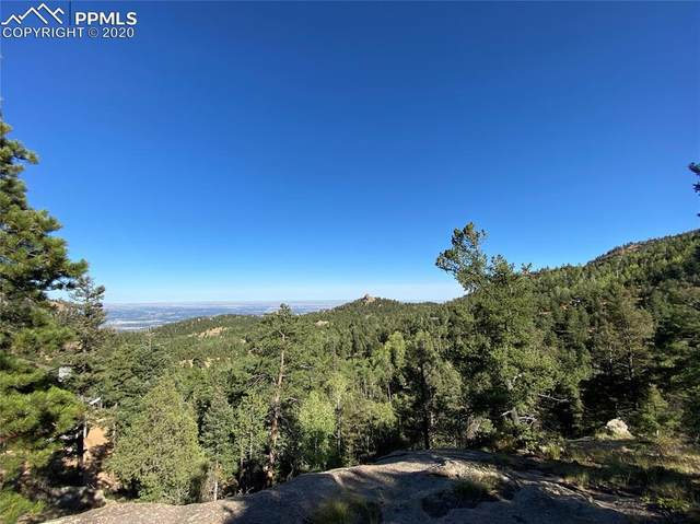 227 Waterfall Loop, Manitou Springs, CO 80829 (#2122161) :: Finch & Gable Real Estate Co.