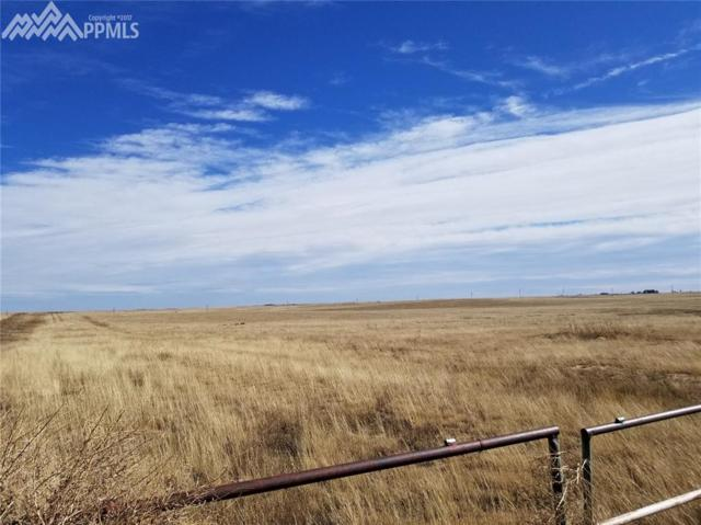 34215 Torrence Road, Yoder, CO 80864 (#2127930) :: The Peak Properties Group