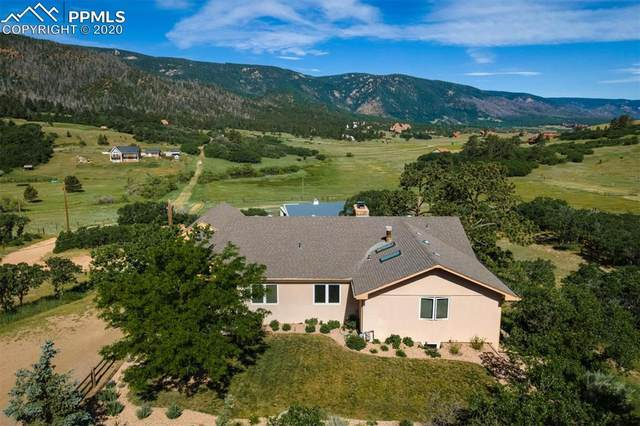 10783 S Perry Park Road, Larkspur, CO 80118 (#2129167) :: Tommy Daly Home Team