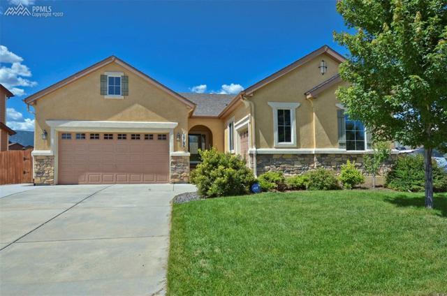 14786 Air Garden Lane, Colorado Springs, CO 80921 (#2130568) :: 8z Real Estate