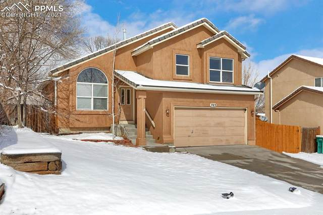 703 Baling Wire Way, Fountain, CO 80817 (#2130857) :: The Harling Team @ HomeSmart