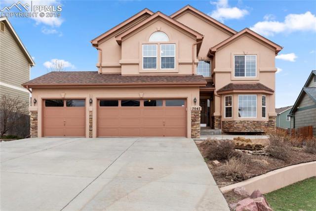 7047 Sapling Place, Colorado Springs, CO 80922 (#2131864) :: Venterra Real Estate LLC
