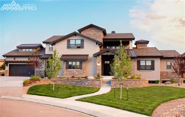 2228 Rainbows End Point, Colorado Springs, CO 80921 (#2133313) :: Action Team Realty