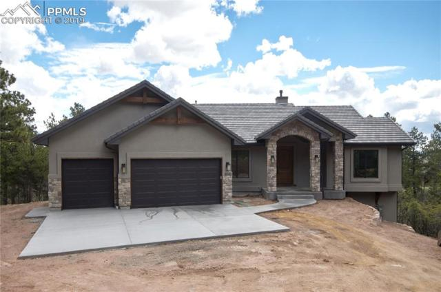 4640 Redstone Ridge Road, Monument, CO 80132 (#2134272) :: Action Team Realty