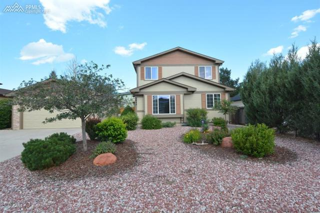 2845 Frazier Lane, Colorado Springs, CO 80922 (#2139701) :: The Treasure Davis Team