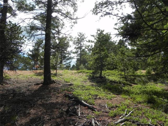 13886 Boulder Lane, Larkspur, CO 80118 (#2148429) :: Colorado Home Finder Realty
