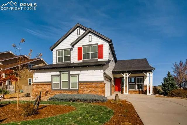 6911 Turnstone Avenue, Castle Rock, CO 80104 (#2149601) :: Harling Real Estate