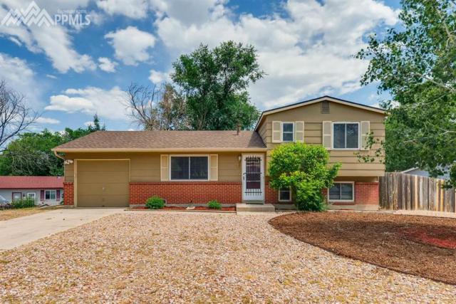 1253 Nez Perce Drive, Colorado Springs, CO 80915 (#2152209) :: Colorado Home Finder Realty