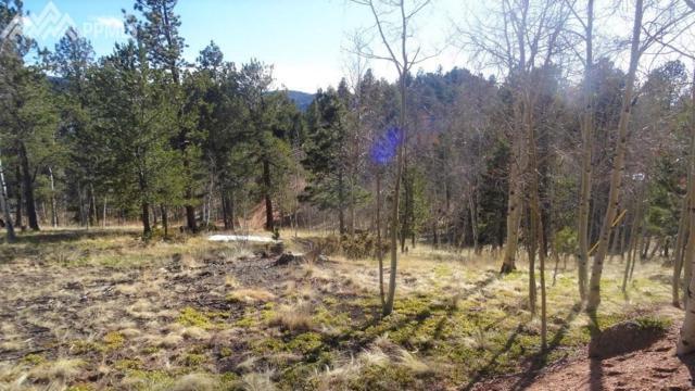 26 Blue Spruce Road, Divide, CO 80814 (#2154138) :: Jason Daniels & Associates at RE/MAX Millennium