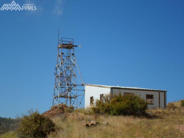 TBD S Highway 67, Cripple Creek, CO 80813 (#2155506) :: 8z Real Estate