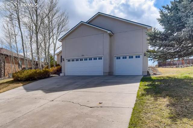 181 Pewter Lane, Monument, CO 80132 (#2157597) :: The Daniels Team