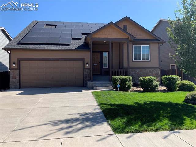 4651 Dancing Rain Way, Colorado Springs, CO 80911 (#2159981) :: CC Signature Group