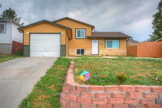4316 College View Drive, Colorado Springs, CO 80906 (#2160421) :: 8z Real Estate
