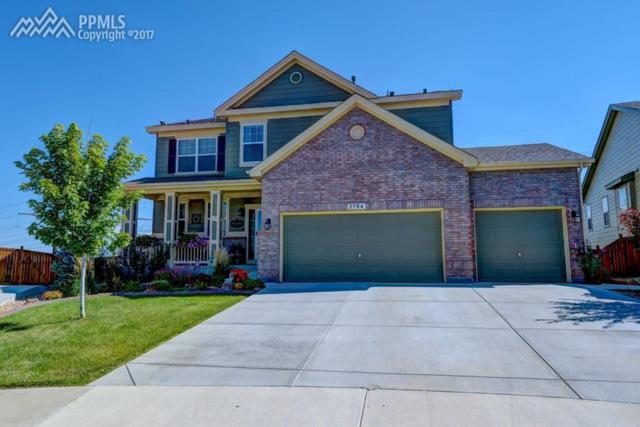 2784 Brush Court, Castle Rock, CO 80108 (#2164647) :: 8z Real Estate
