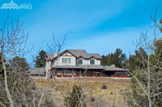 4687a W Highway 24 Highway, Florissant, CO 80816 (#2168325) :: Group 46:10 Colorado Springs