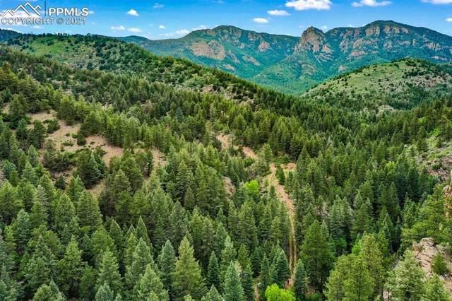 4646 Little Turkey Creek Road, Colorado Springs, CO 80926 (#2176392) :: Action Team Realty