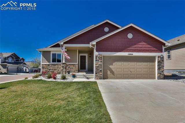 12404 Fish Pond Point, Colorado Springs, CO 80921 (#2177413) :: The Kibler Group