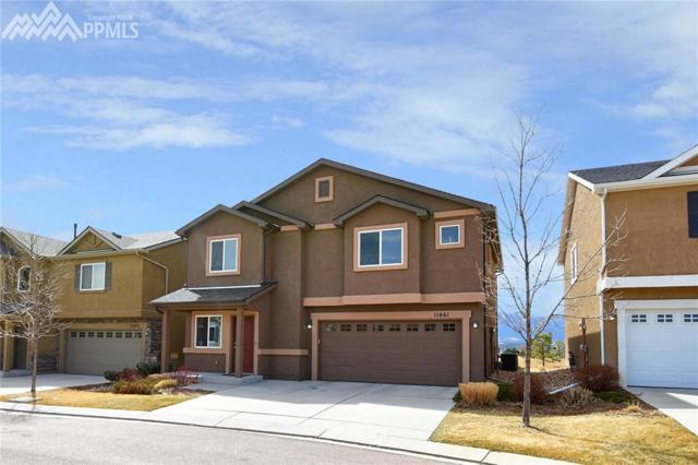11661 Black Maple Lane, Colorado Springs, CO 80921 (#2178218) :: 8z Real Estate