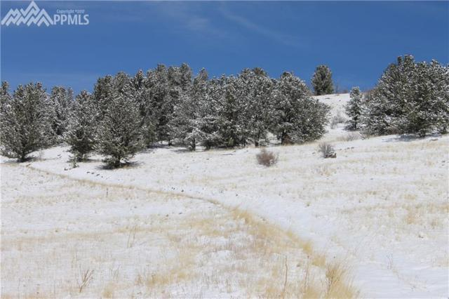 000 Teller 1 Road, Cripple Creek, CO 80813 (#2179831) :: CENTURY 21 Curbow Realty