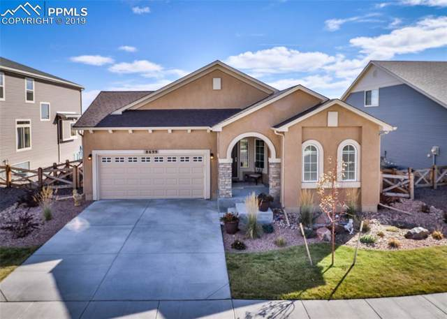 8699 Tranquil Knoll Drive, Colorado Springs, CO 80927 (#2180755) :: Tommy Daly Home Team
