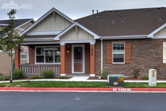 2828 Lewis Meadows View, Colorado Springs, CO 80907 (#2180823) :: 8z Real Estate
