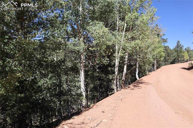 1560&1520 Pikes Peak Drive, Divide, CO 80814 (#2181626) :: Tommy Daly Home Team