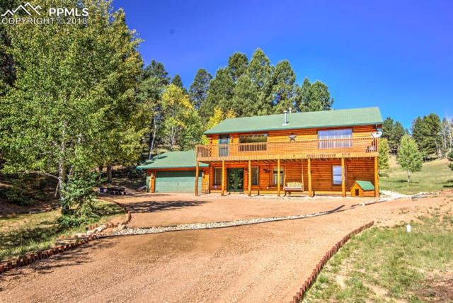 185 Pamona Lake Drive, Divide, CO 80814 (#2190219) :: The Peak Properties Group