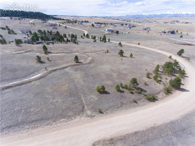 19620 Green Sage Drive, Colorado Springs, CO 80908 (#2191315) :: 8z Real Estate