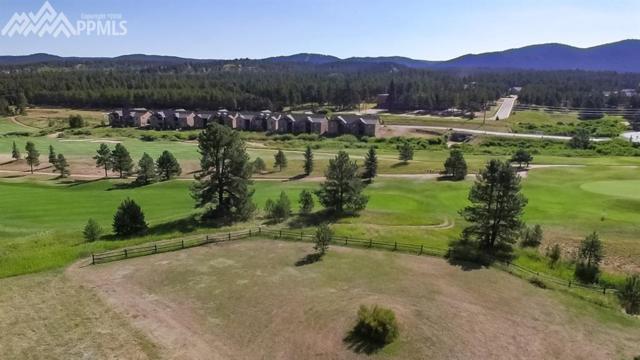1210 Woodland Valley Ranch Drive, Woodland Park, CO 80863 (#2196818) :: Venterra Real Estate LLC