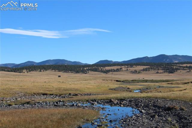 County 118A Road, Hartsel, CO 80449 (#2203168) :: 8z Real Estate