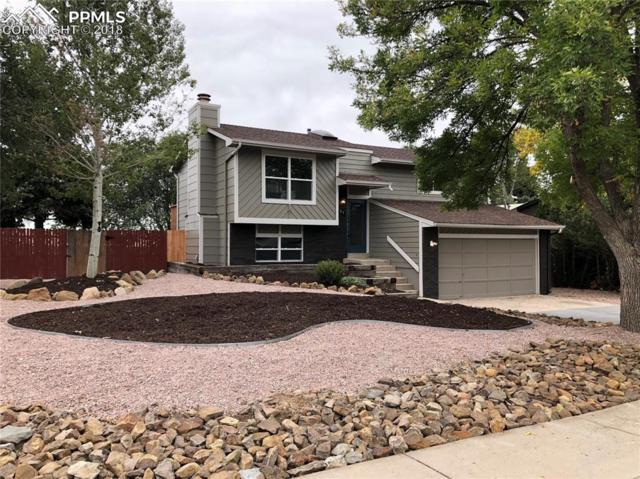5427 Alteza Street, Colorado Springs, CO 80917 (#2203590) :: The Treasure Davis Team