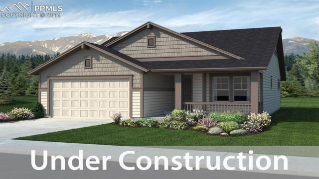 6031 Trappers Tale Court, Colorado Springs, CO 80923 (#2205197) :: The Hunstiger Team