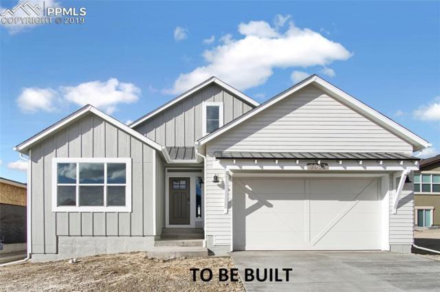 10373 Green Lake Court, Colorado Springs, CO 80924 (#2205405) :: CC Signature Group