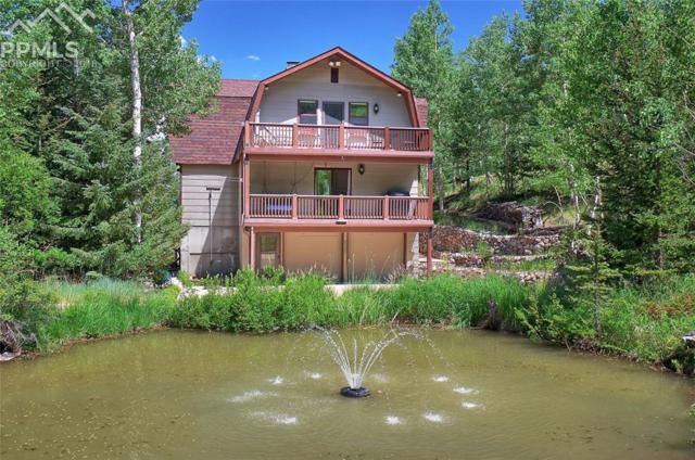 6250 Waterfall Loop, Manitou Springs, CO 80829 (#2205795) :: The Treasure Davis Team