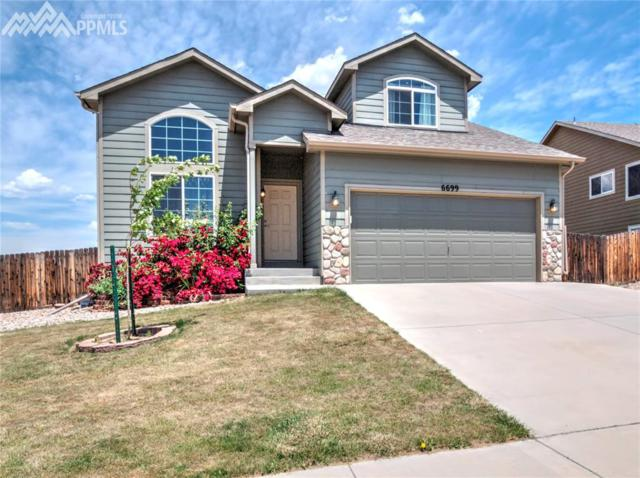 6699 Passing Sky Drive, Colorado Springs, CO 80911 (#2206866) :: Fisk Team, RE/MAX Properties, Inc.