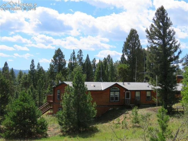 84 Shavano Drive, Florissant, CO 80816 (#2208402) :: The Hunstiger Team