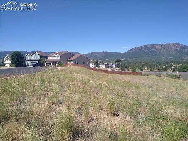 17210 Park Trail Drive, Monument, CO 80132 (#2210894) :: The Treasure Davis Team