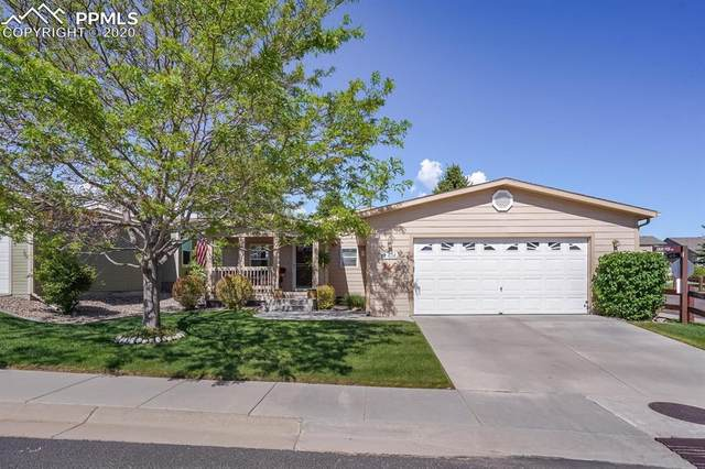 4114 Gray Fox Heights, Colorado Springs, CO 80922 (#2213010) :: The Daniels Team