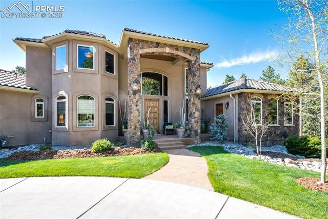 14520 Old Lasso Point, Colorado Springs, CO 80921 (#2213015) :: The Daniels Team