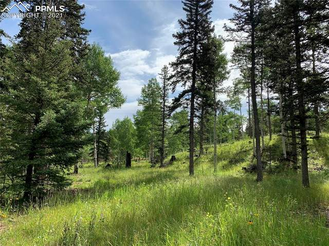 s146 Waterfall Loop, Manitou Springs, CO 80829 (#2213730) :: The Gold Medal Team with RE/MAX Properties, Inc