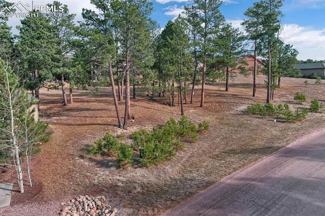 17565 Pond View Place, Colorado Springs, CO 80908 (#2218874) :: CC Signature Group