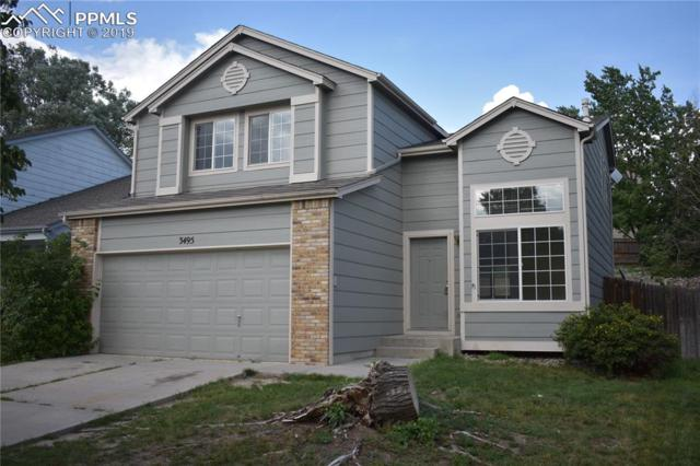 3495 Bareback Drive, Colorado Springs, CO 80922 (#2220563) :: CC Signature Group