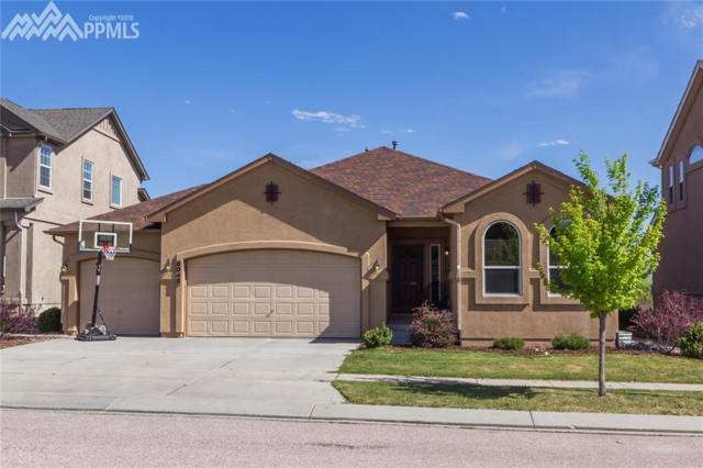 6045 Revelstoke Drive, Colorado Springs, CO 80924 (#2226204) :: The Treasure Davis Team