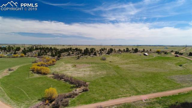 11535 Cave Spring Road, Franktown, CO 80116 (#2227993) :: CC Signature Group