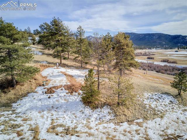 308 Wells Fargo Drive, Florissant, CO 80816 (#2229442) :: Tommy Daly Home Team