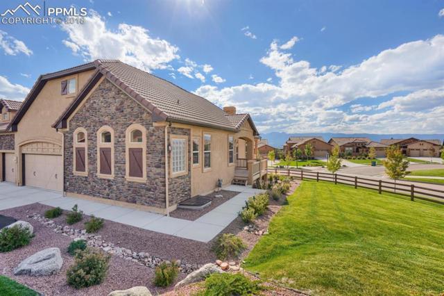 12903 Cupcake Heights, Colorado Springs, CO 80921 (#2234206) :: The Peak Properties Group