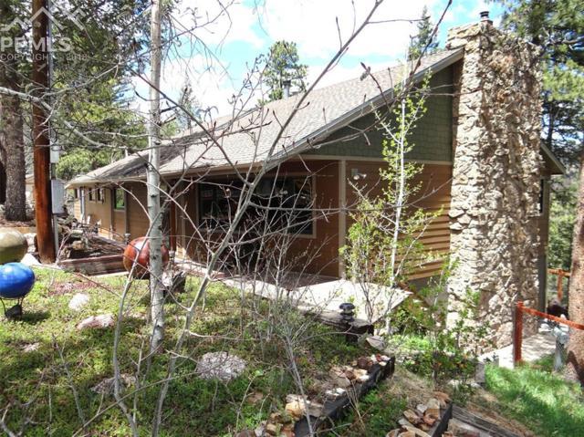 10145 Mountain Road, Chipita Park, CO 80809 (#2235570) :: The Treasure Davis Team