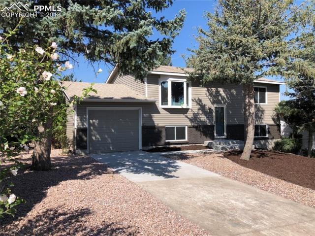 4412 S Chamberlin Road, Colorado Springs, CO 80906 (#2236545) :: Jason Daniels & Associates at RE/MAX Millennium