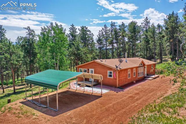 168 Blackhawk Circle, Florissant, CO 80816 (#2240394) :: Jason Daniels & Associates at RE/MAX Millennium