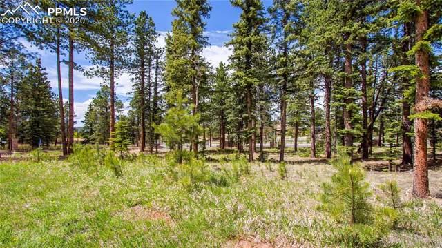 1265 Cottontail Trail, Woodland Park, CO 80863 (#2244949) :: The Daniels Team